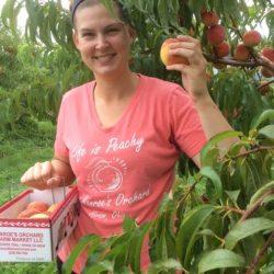 Allison harvesting peaches