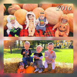 Share your memories and pics, we'd love to have them on our website!  Just like these four Cuties (born 17 days apart) are enjoying their first time in the pumpkin patch!  Thank you Moms for keeping us updated on the pics!