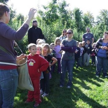 The walking section of the orchard tour includes picking an apple and so much more!