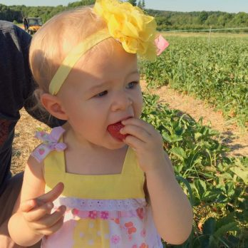 A cutie in the Strawberry Patch at Monroe's Orchard!