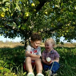 Two brothers enjoying the PYO at Monroe's Orchard