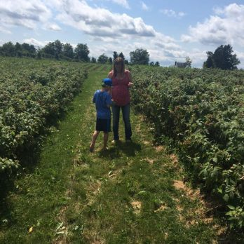 Picking their own delicious red raspberries!