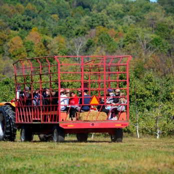Wagon ride with stunning scenery at Monroe's Orchard in the lush farm land of Hiram, OH!