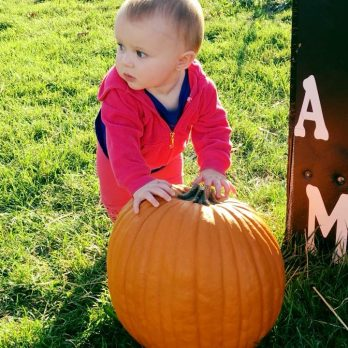 Someone's Pumpkin found the perfect pumpkin!