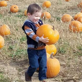 Finding the perfect pumpkin... Priceless!