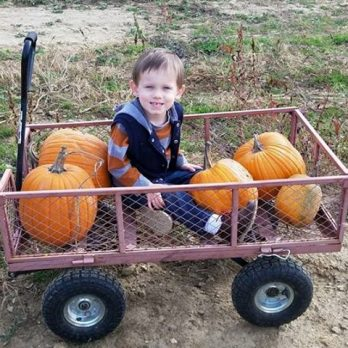 Chose the perfect pumpkin and got a wagon ride as well!