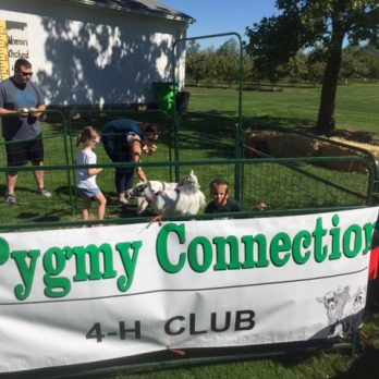 Appreciate the local 4-H Pygmy Connection
