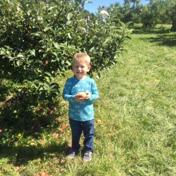Making a Memory in the apple orchard at Monroe's Orchard Apple Harvest Festivals