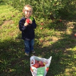 Fun at Monroe's Orchard PYO.  Priceless!