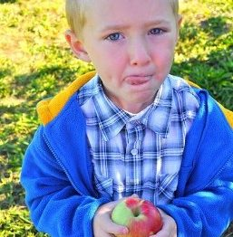Apples taste best when you can pick your own!