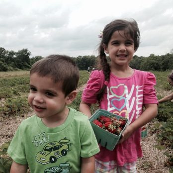 It's a family affair, PYO Strawberries at Monroe's Orchard!